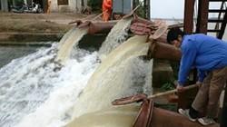 Diện tích lấy nước gieo cấy đạt 96%