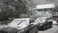 Mưa tuyết lại phủ trắng Sapa