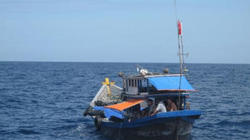 2 tàu cá cùng hàng chục ngư dân bị nạn trên biển