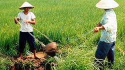 Thời tiết nông vụ miền Trung và Tây Nguyên từ ngày 21-28.2