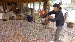 Bí quyết thu hút nông dân ở Sơn La
