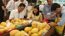 Tiền Giang: Đã có 17 HTX sản xuất, tiêu thụ trái cây