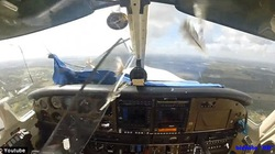 Kinh hoàng chim đâm thủng kính máy bay, lao vào mặt phi công