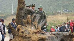 """Vụ vớt gỗ sưa ở Quảng Bình: Xuất hiện """"ông trùm"""""""