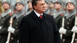 Ông Viktor Yanukovych tuyên bố sẽ đấu tranh đến cùng