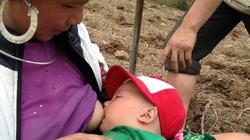 Nông dân Sa Pa: Du canh trốn rét