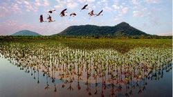 Xứ sở cổ tích U Minh Thượng