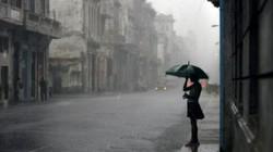 Ngày Quốc tế Phụ nữ, Hà Nội không nắng, mưa phùn, trời ẩm