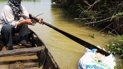 Xác gia cầm vứt bừa bãi trên sông