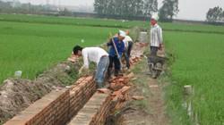 Sóc Sơn (Hà Nội): Xã Mai Đình cơ bản đạt 19/19 tiêu chí