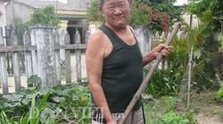 Lão nông Quảng Nam không... mạch, không... huyết áp vẫn sống khỏe