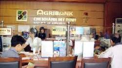Hơn 2,2 triệu hộ vay vốn của Agribank
