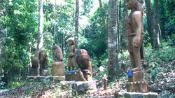 Tuần Văn hóa - Du lịch Măng Đen Kon Plông
