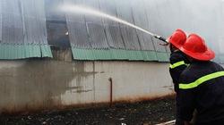 Đăk Lăk: Cháy rụi kho chứa hơn 500 tấn giấy vụn