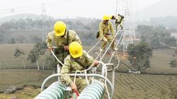 Yêu cầu tăng cường  kiểm tra lưới điện