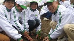Canon giúp trồng mới 120ha rừng phòng hộ
