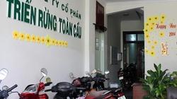 Đà Nẵng: Cảnh báo về một công ty trồng rừng