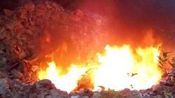 Chủ cơ sở nuôi gián đứng nhìn lửa tiêu hủy cháy rừng rực