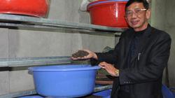 Gián bị tiêu hủy, chuyên gia Trung Quốc... về nước