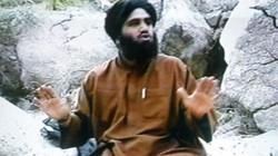 Trùm khủng bố Bin Laden nhờ con rể công bố vụ 11.9
