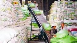 HDBank cho vay thu mua, tạm trữ thóc gạo vụ Đông xuân 2013-2014
