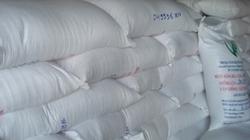 Hậu Giang: Bảo quản 1.960 tấn lúa giống bằng túi yếm khí