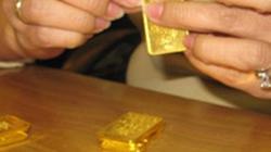 Người giúp việc trộm 5,5 lượng vàng