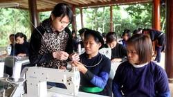 Tuyên Quang: 65 tỷ đồng cho các xã nghèo