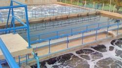 Sửa đổi quy định để khơi thông hoạt động ngành thủy sản