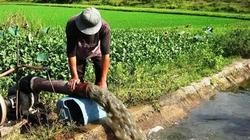 Đà Nẵng: Triển khai ứng phó thiếu nước sản xuất vụ hè thu