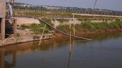 Vốn Agribank giúp nông dân đổi đời