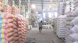 Agribank cho vay  mua tạm trữ lúa gạo  với lãi suất 7%/năm