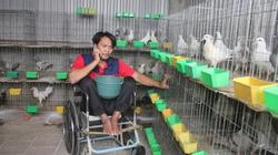 Ra tù với đôi chân liệt, vẫn thành tỷ phú nhờ bồ câu