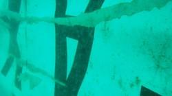 Tìm thấy phần đuôi có thể chứa hộp đen của QZ8501