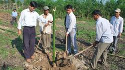 """Khi nông dân giải đáp được câu hỏi """"Trồng cây gì, nuôi con gì hiệu quả?"""" nhờ Hội"""