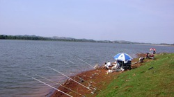Đi câu cá, phó giám đốc công an tỉnh Cà Mau bị điện giật bỏng toàn thân