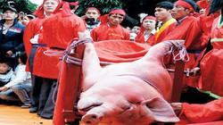 Đại diện Bộ VH-TT&DL: Mong các nhà nghiên cứu đừng bảo thủ về tục chém lợn