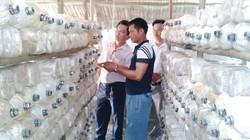 Xây dựng nhiều mô hình sản xuất nông nghiệp hiệu quả cao