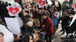 Thiếu nữ Ukraine quỳ gối cầu hôn bạn trai TQ giữa phố đông