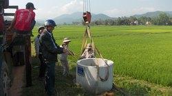Bình Định: Hỗ trợ nông dân gom rác nguy hại