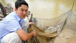 Nông dân có thể an tâm nuôi cá chạch bùn