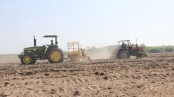 Cơ giới hóa cho cánh đồng mía ở Quảng Ngãi