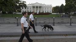 Mật vụ Mỹ xin 8 triệu USD xây Nhà Trắng giả để huấn luyện