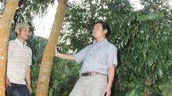 Giúp người Ca Dong làm giàu từ đất hoang