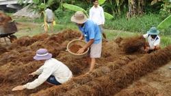 Giúp nông dân từ những điều nhỏ nhất