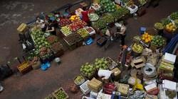 Việt Nam sẽ là con hổ dũng mãnh của nền kinh tế châu Á