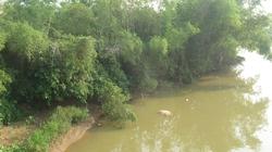 Dòng sông ô nhiễm