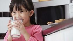 Khi nào sữa trở nên độc hại với trẻ?