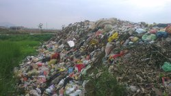 Bãi rác gây ô nhiễm