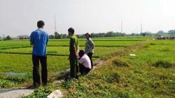 Bắt quả tang nông dân dùng dầu nhớt thải... tưới rau